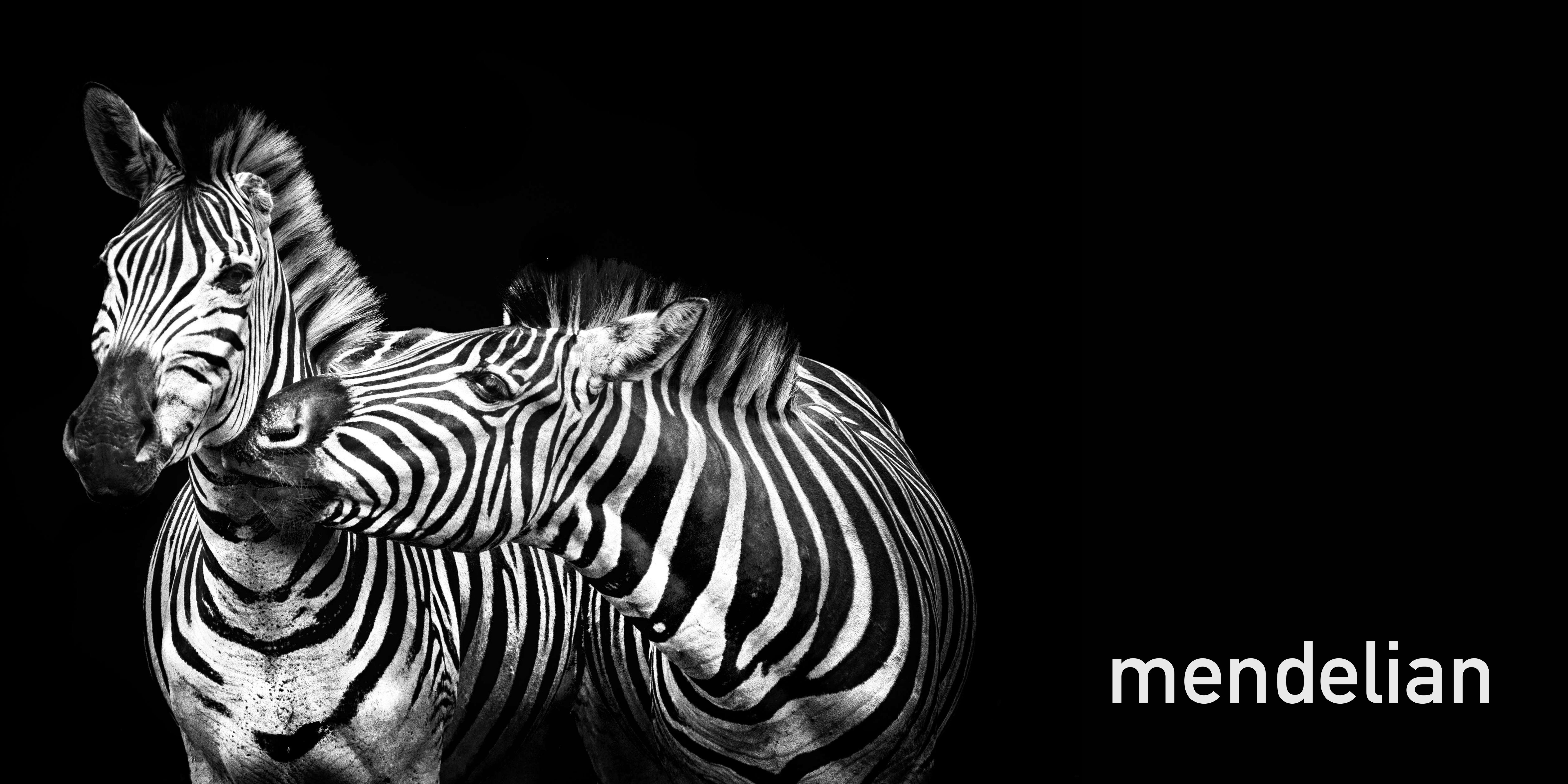 Mendelian Rare diseases zebras